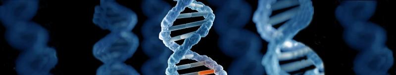 Genetic Testing Molecule - Newlife Fertility Centre